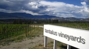 En Colombie Britannique, je ne pouvais pas passer à côté de la région viticole Okanagan Valley. Ici, Tantalus vineyards, un domaine qui travaille à la conversion vers l'agriculture biologique